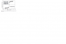 mágneses erő: a) tölgyfa b) biofaszén 23.7Co