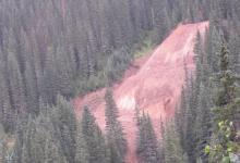 Bonner mine dumps (forrás: http://www.mindat.org)